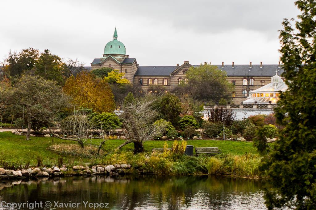 Copenhagen, Denmark - Botanical Garden - 3